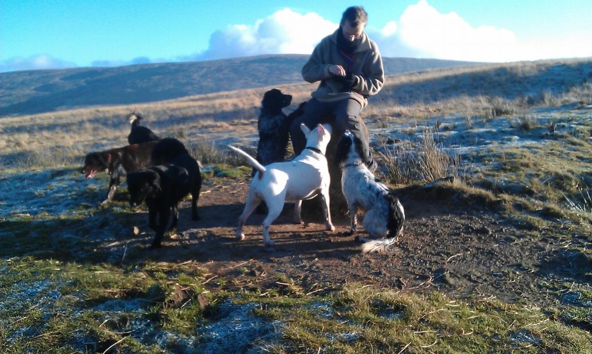 Lucy, Wilson, Izzy, Skye, Lulu and Hamish